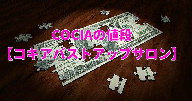 COCIA値段